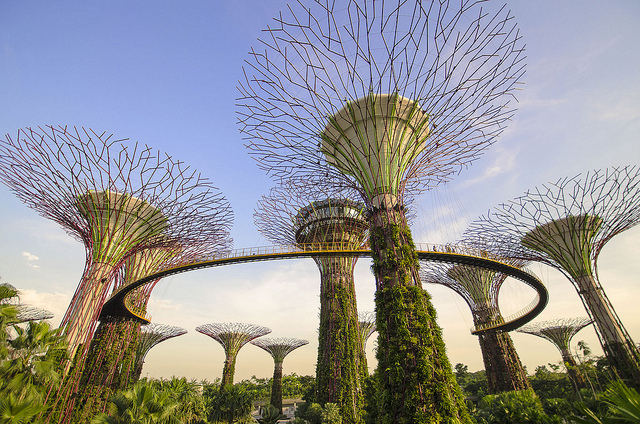 Supertree grove in Singapore – Photo:  Isen Majennt, C.c. 2.0 nc nd