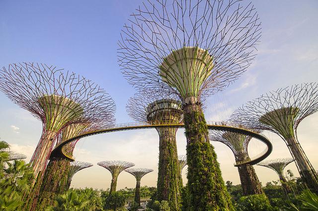 Supertree grove in Singapore – Photo:  Isen Majennt, C.c. 2.0 nc nd