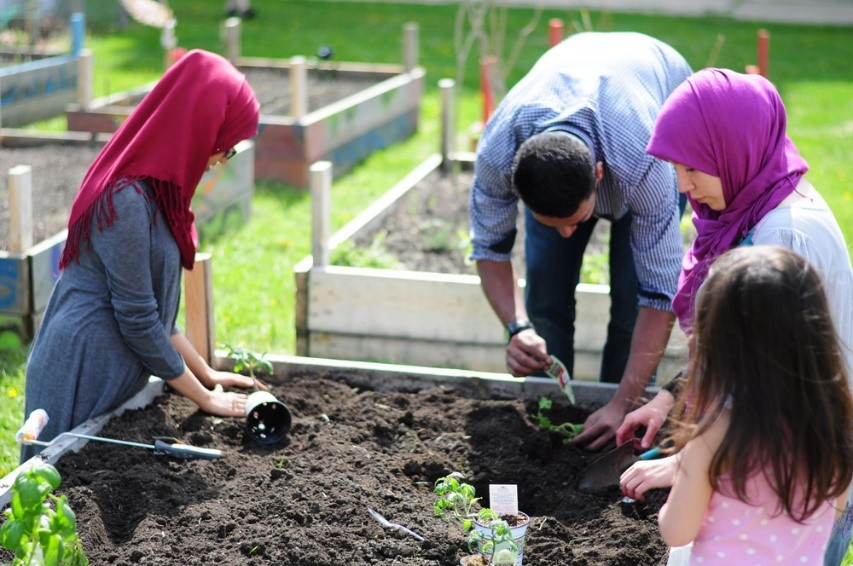 Planting crops in the community garden – Photo:    The Green Room