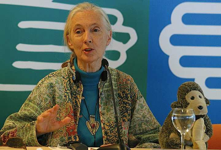 Jane Goodall – Photo: RBS