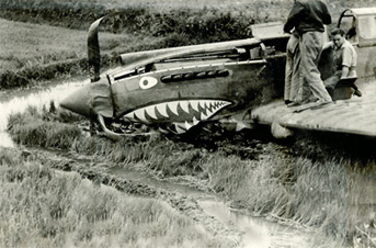 Training flight crash of P40