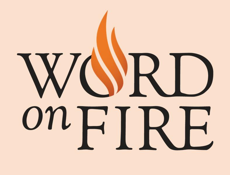 Word on Fire    Follow this link for Bishop Robert Barron's videos, homilies, podcasts and blog. This is a great resource for faith-building!