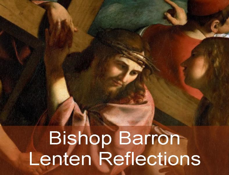 Click here for daily inspiration from Bishop Robert Barron!