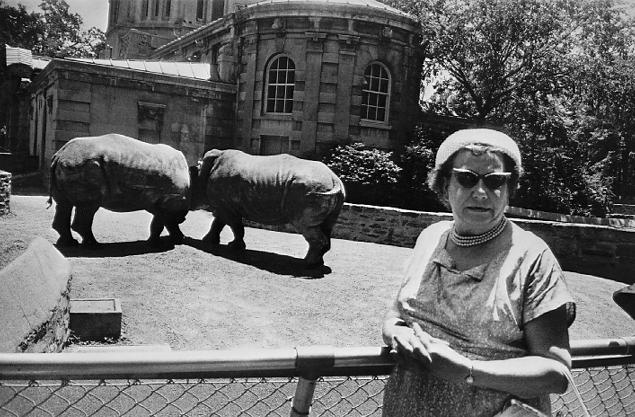 (Gary Winogrand, Bronx Zoo 1963)