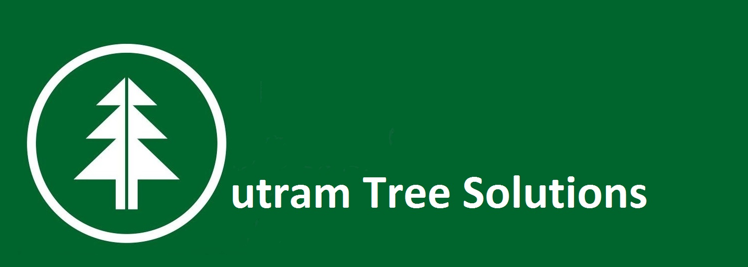 Outram Tree Solutions