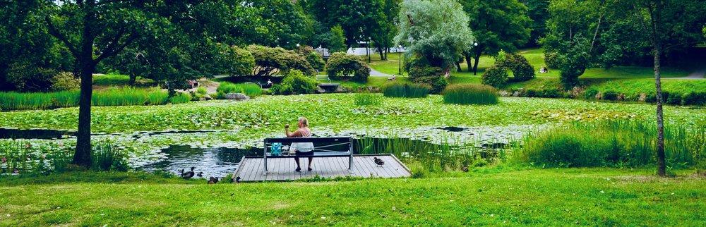 """The pond outside of """"Artisten,"""" Göteborg University's center for the arts."""