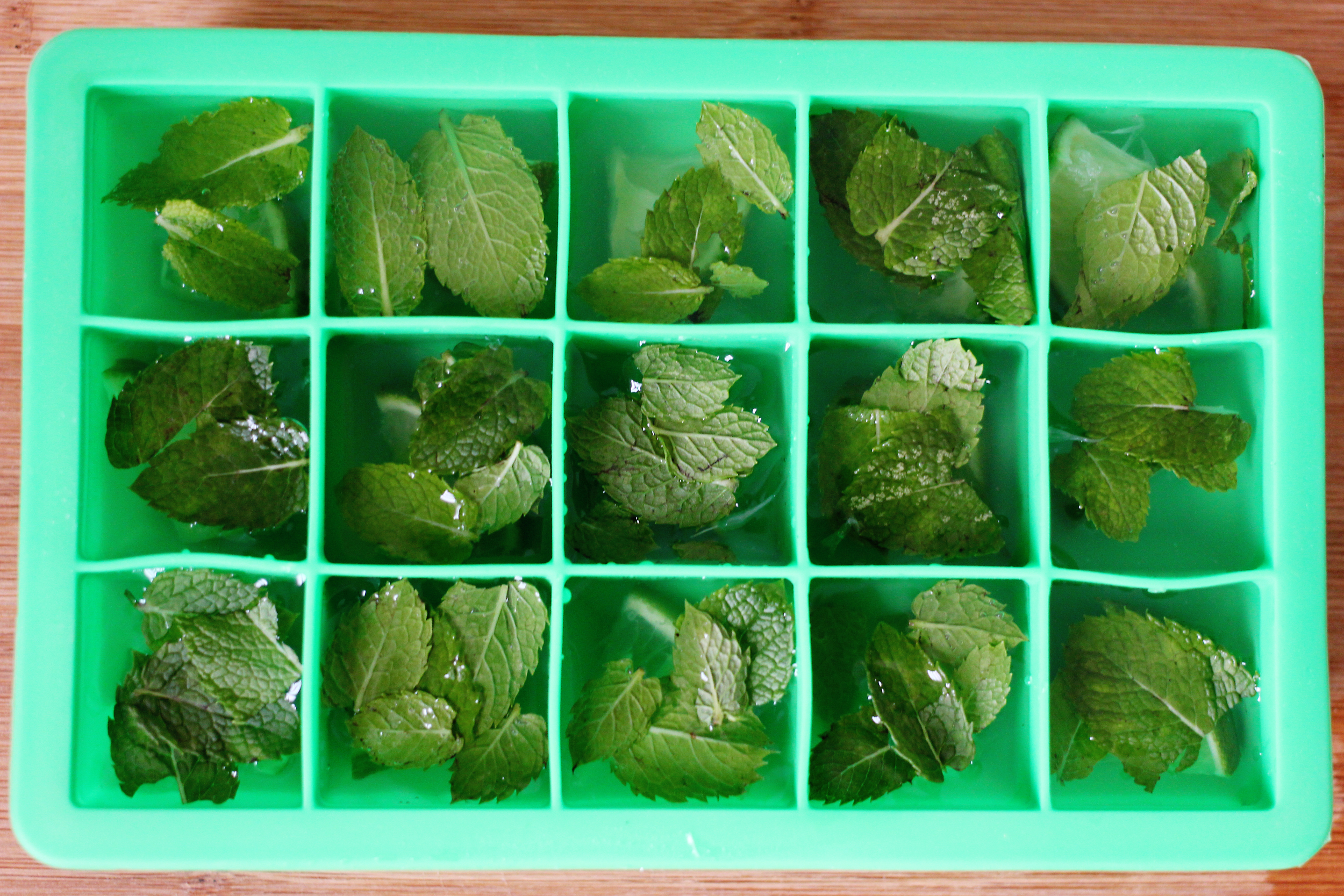 lime_mint_coconutwater_cubes5