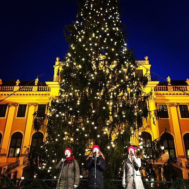 Is there anything more Christmassy than carols in front of a giant tree next to the cutest market 🤔 . . . . #christmas #christmastree #christmasmarket #festive #festivefun #austria #vienna #viennachristmasmarket #viennanow #viennacity #vienna_city #viennaaustria #viennagoforit #ig_europe #instatravel #travel #travelblogger #travelblog #travelbug #travelpic #travelgirl #topviennaphoto #wonderful_places #living_europe #tlpicks #winter #winterwonderland #magical #holiday #weekendtrip