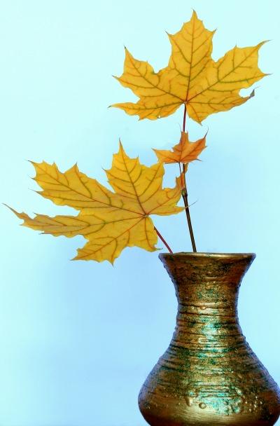 leavesinvase.jpg