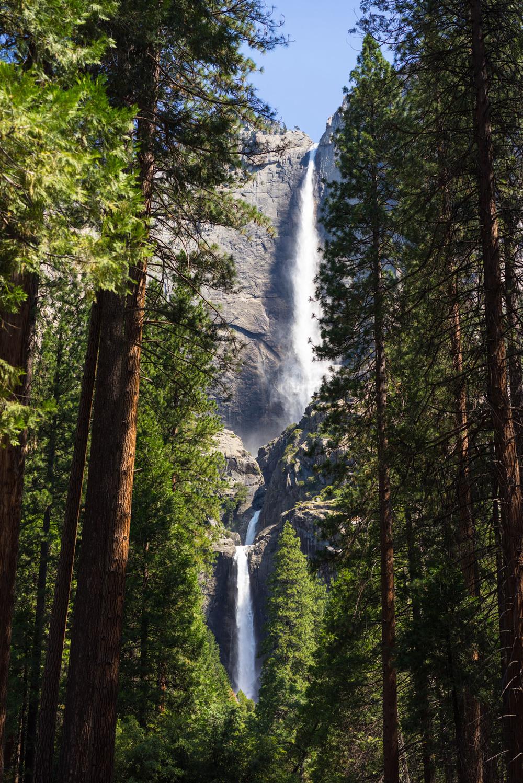 Yosemite, NP
