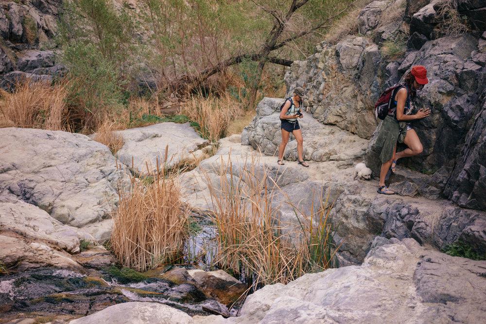 Hike to Darwin Falls