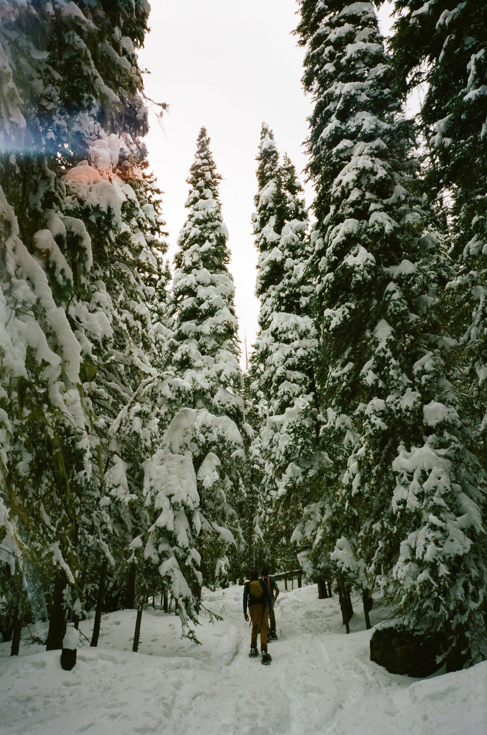 Snowshoeing in 35 mm