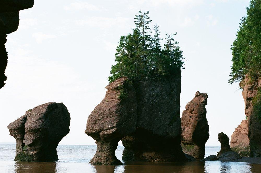 Hopewell Rocks, 35mm