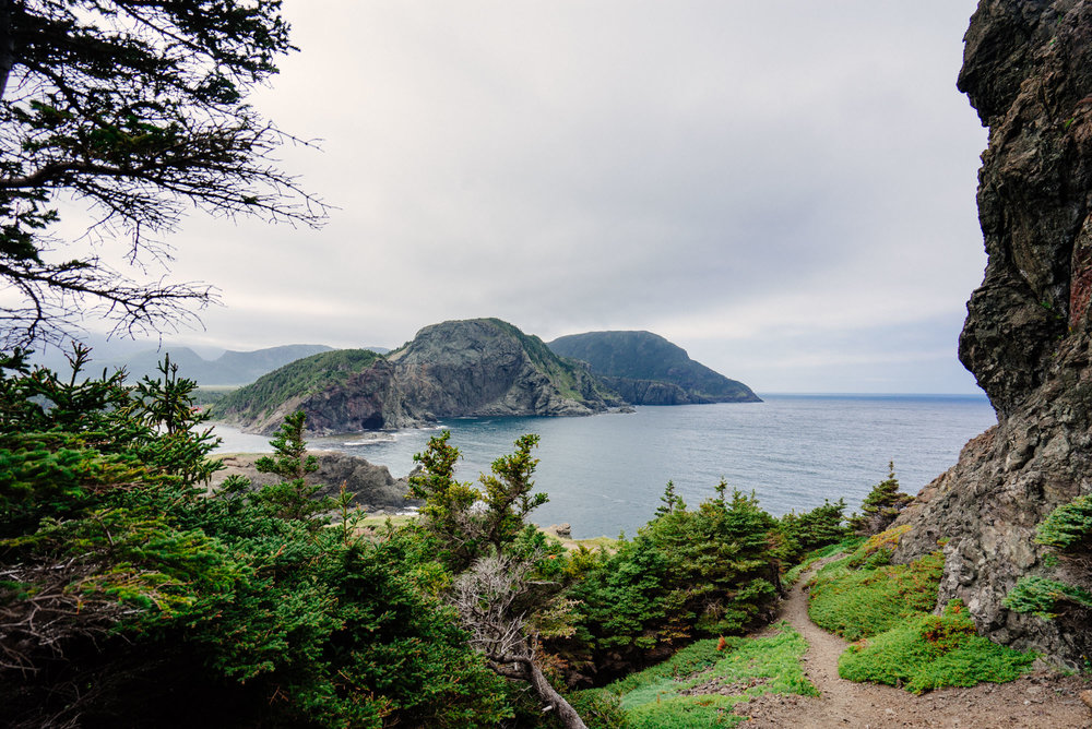 Hiking away from Bottle Cove