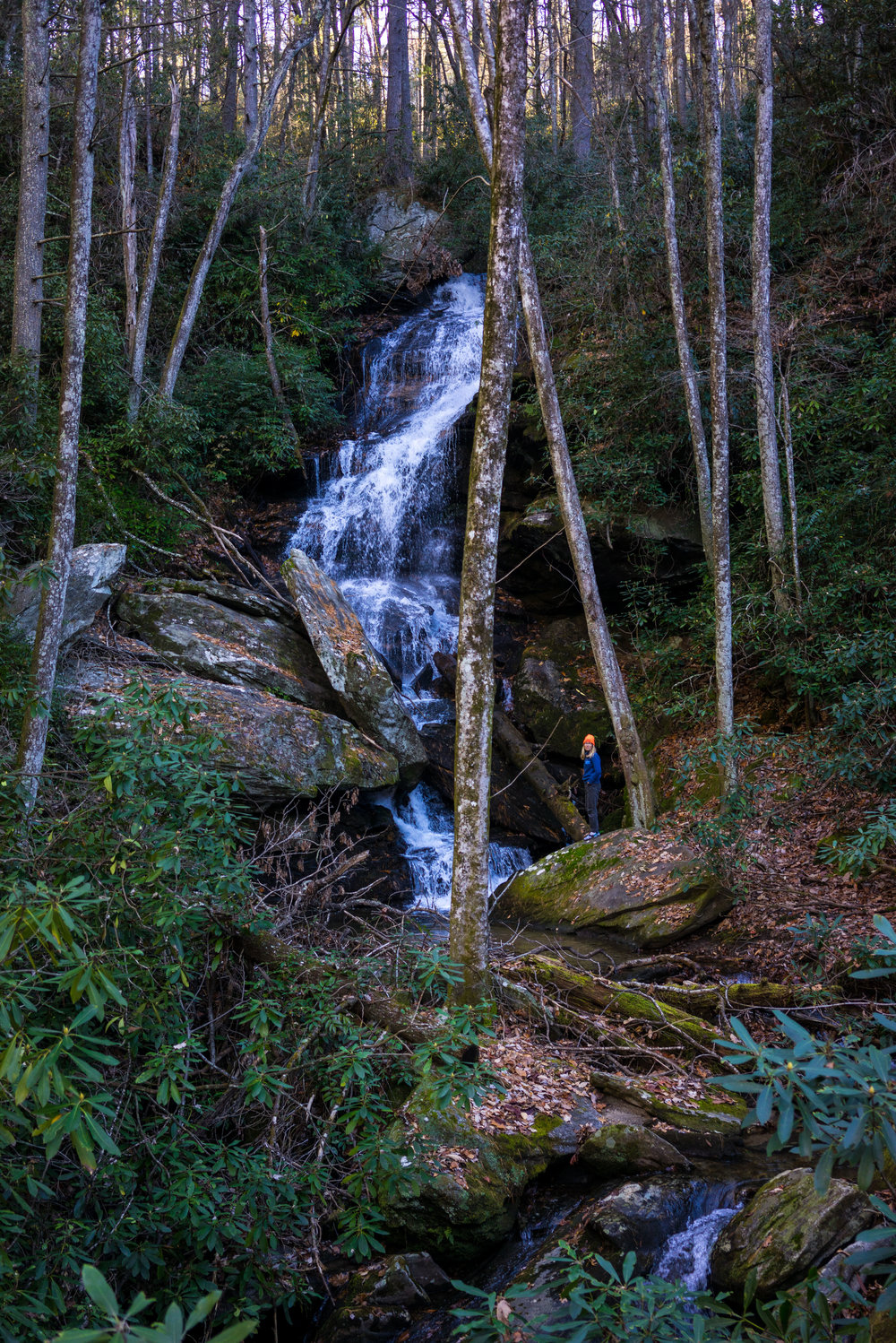 Found a waterfall up the road from camp