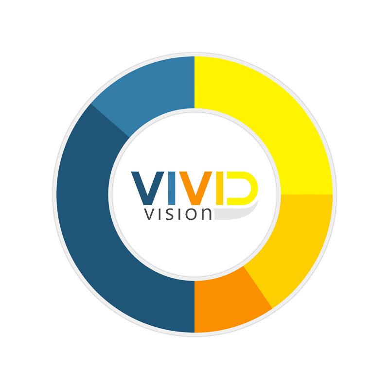 vividvision.jpg