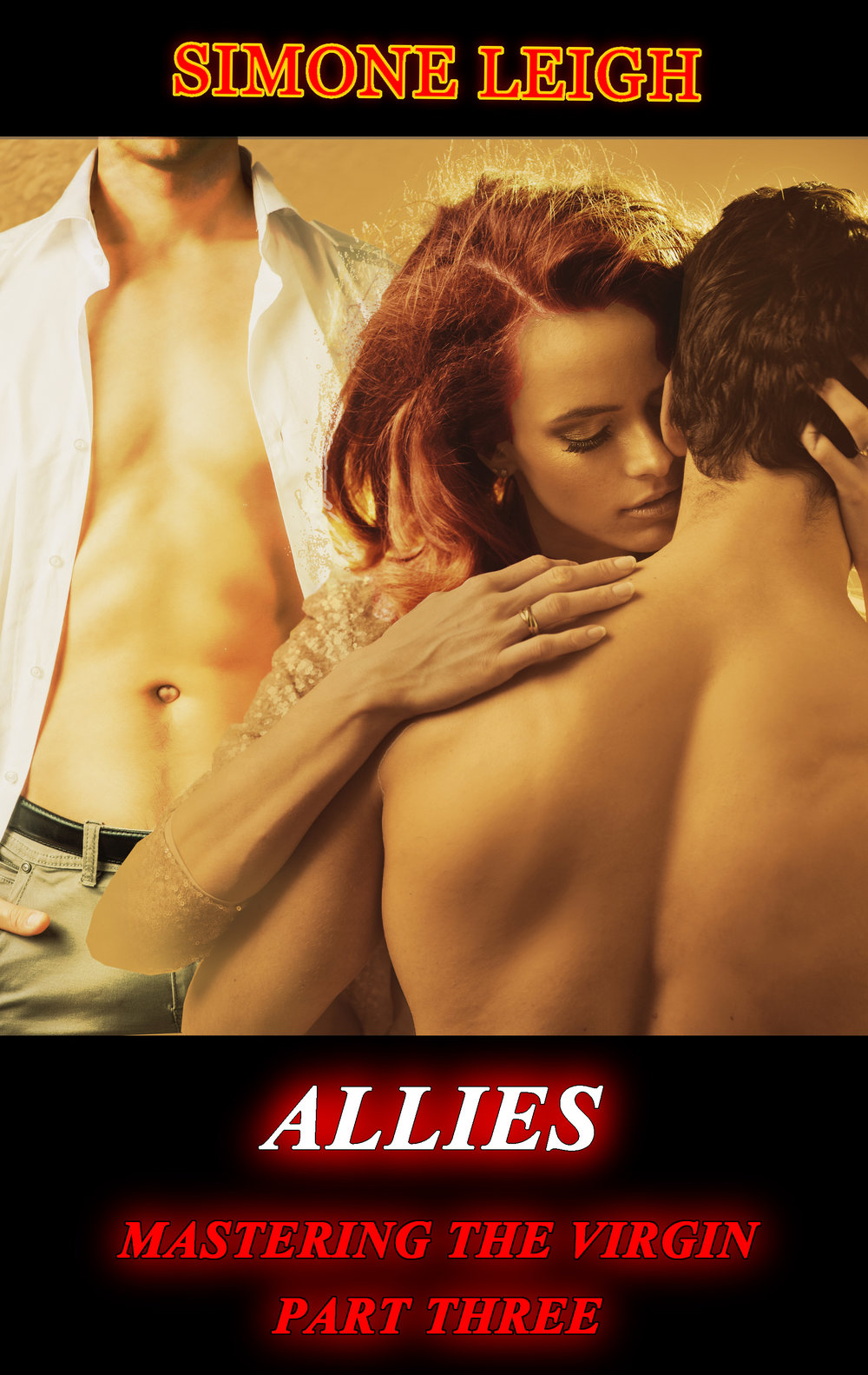 Allies Book Cover 1000c.jpg