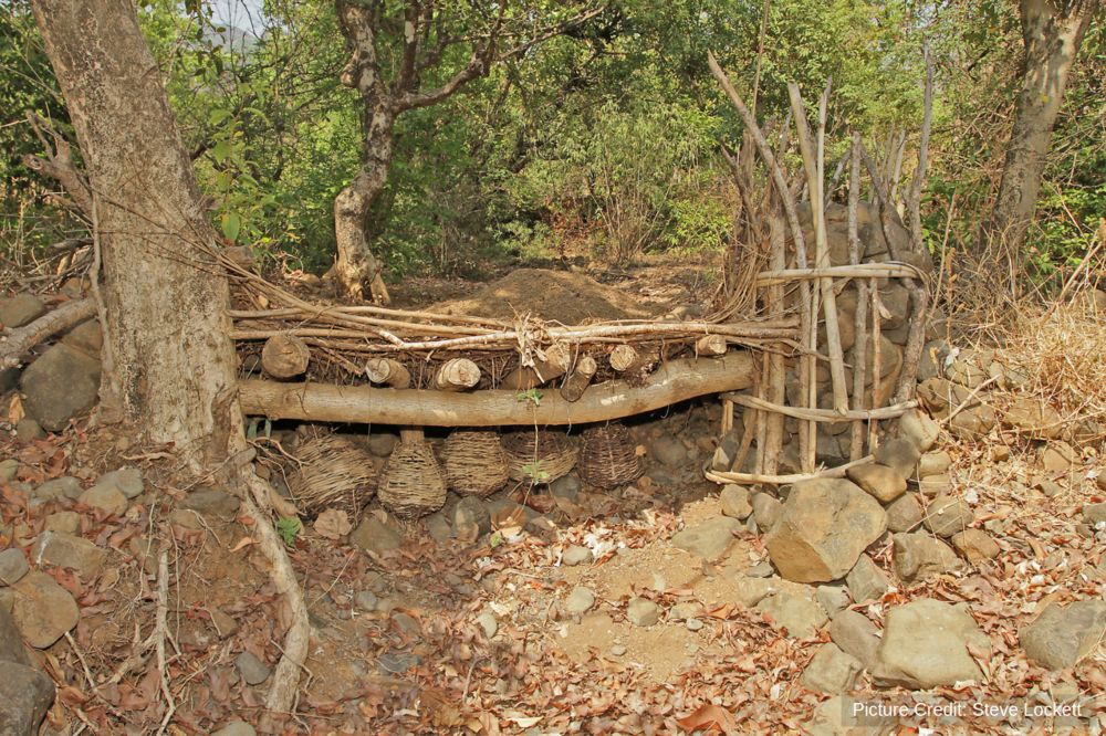 A selective and sustainable fishing trap buried in the substrate of a tributary in India