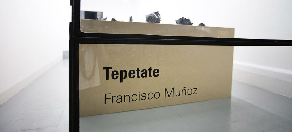 CW_Tepetate_FrancizcoMunoz_05.jpg