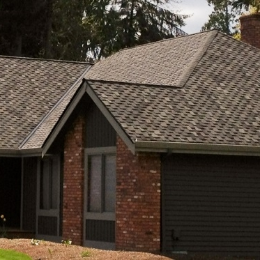 Roof Options - Customize it and make it your own