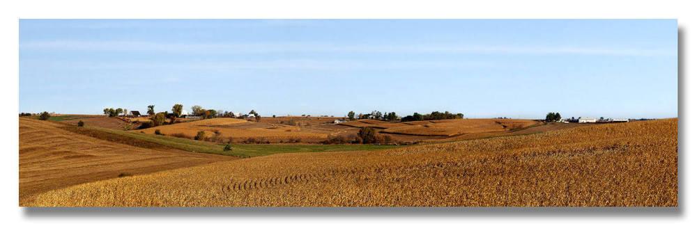Harvest Redux