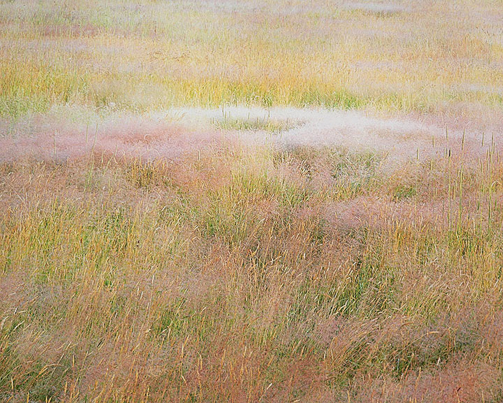 "Christopher Burkett   ""Clouds of Blooming Grasses,"" Connecticut    Cibachrome Photograph    Available in 20"" x 24"", 30"" x 40"", and 40"" x 50"""