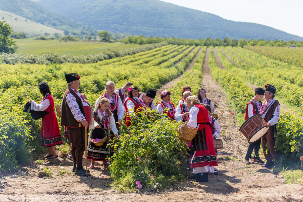 Gorno Izvorovo, Bulgaria - May 29, 2016: Bulgarian annual Rose picking ritual. People singing and dancing dressed in traditional clothing. Source: iStock by Getty Images
