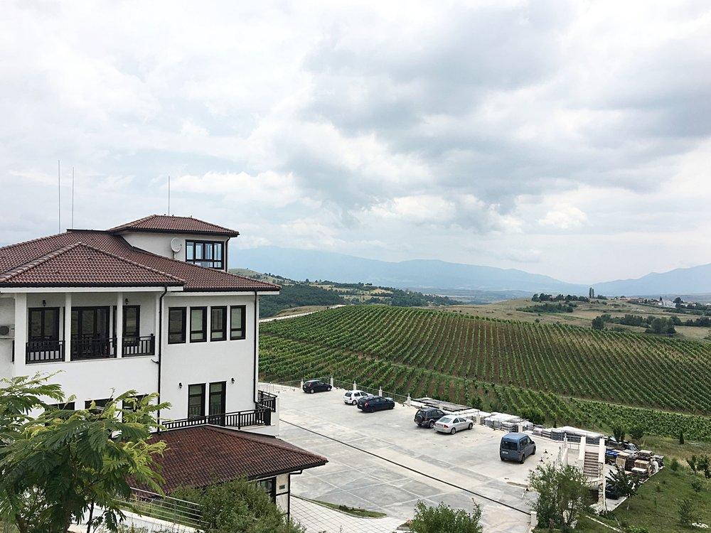 Villa Melnik vineyards and winery