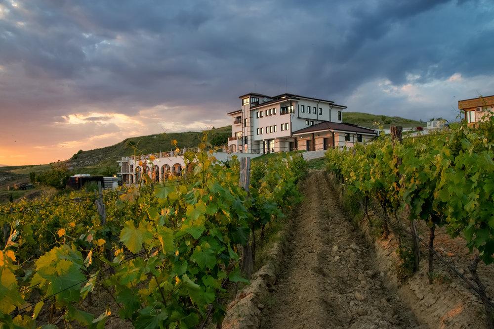 Villa Melnik, Photo:   http://www.andrey-andreev.com/
