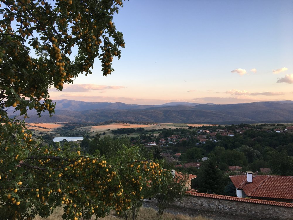 Sunset and a plum tree from the hill north of Zheravna