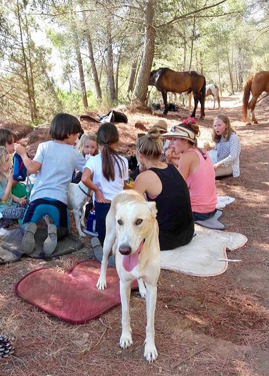 Ibiza horse riding