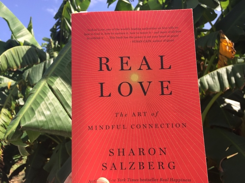 Real Love by Sharon Salzberg
