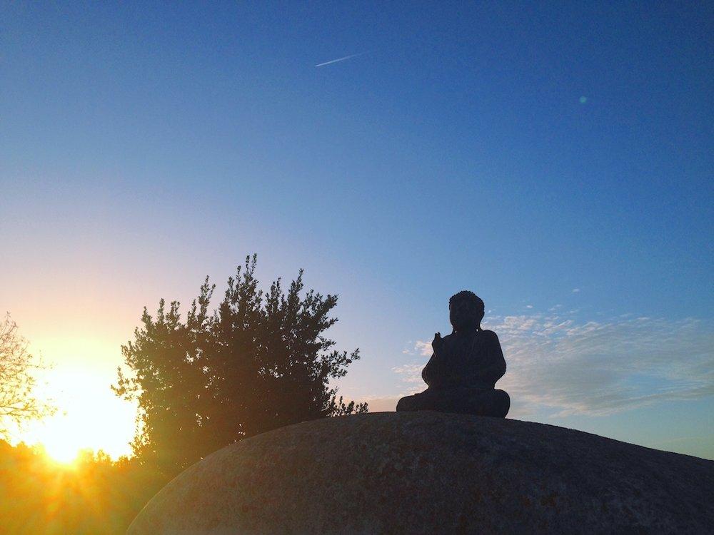 Yoga and vipassana meditation Ibiza