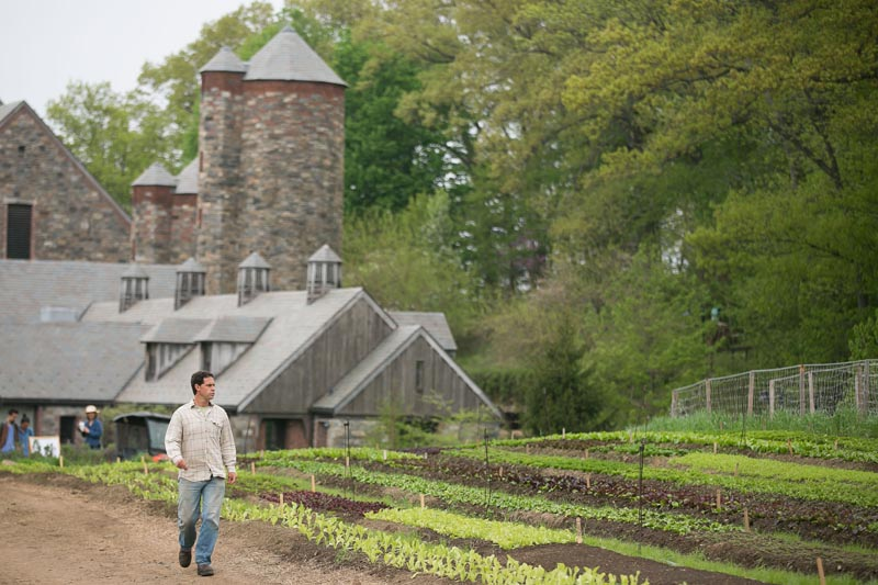 Farm-Food-Stone-Barns-856