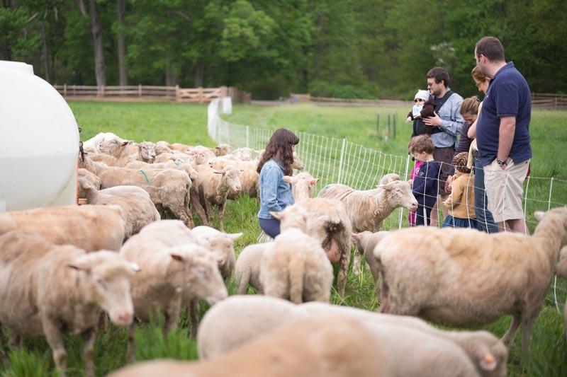 Farm-Food-Stone-Barns-860