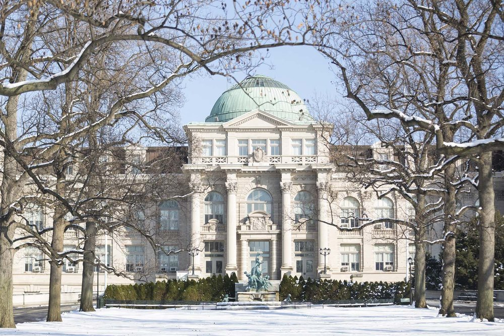 NYBG Library Snow Landscape