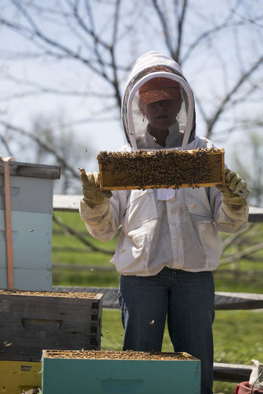 Beekeeper at Stone Barns