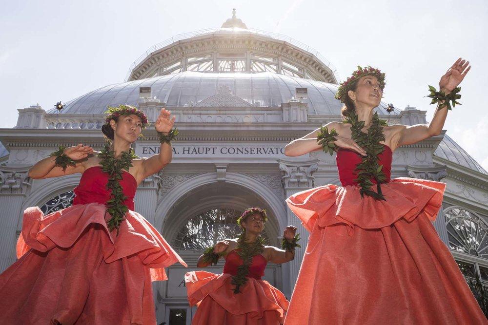 NYBG Hula Dancers