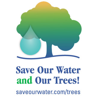 SaveOurWaterAndOurTrees_Widget-320x320.jpg