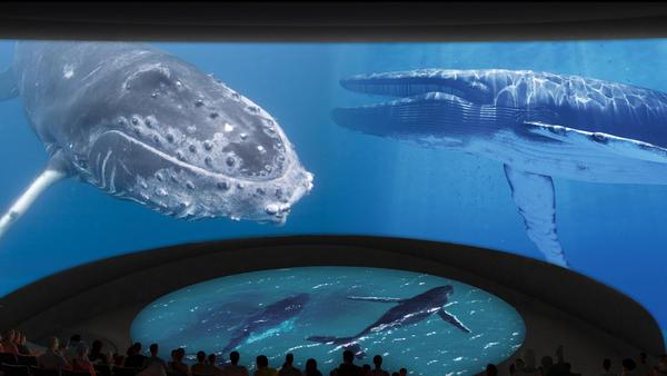 la-me-long-beach-aquarium-expansion-photos.jpg