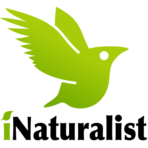 inaturalist.org
