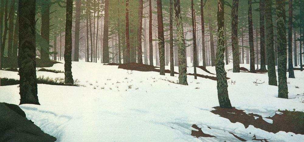 Finnish Woods #2
