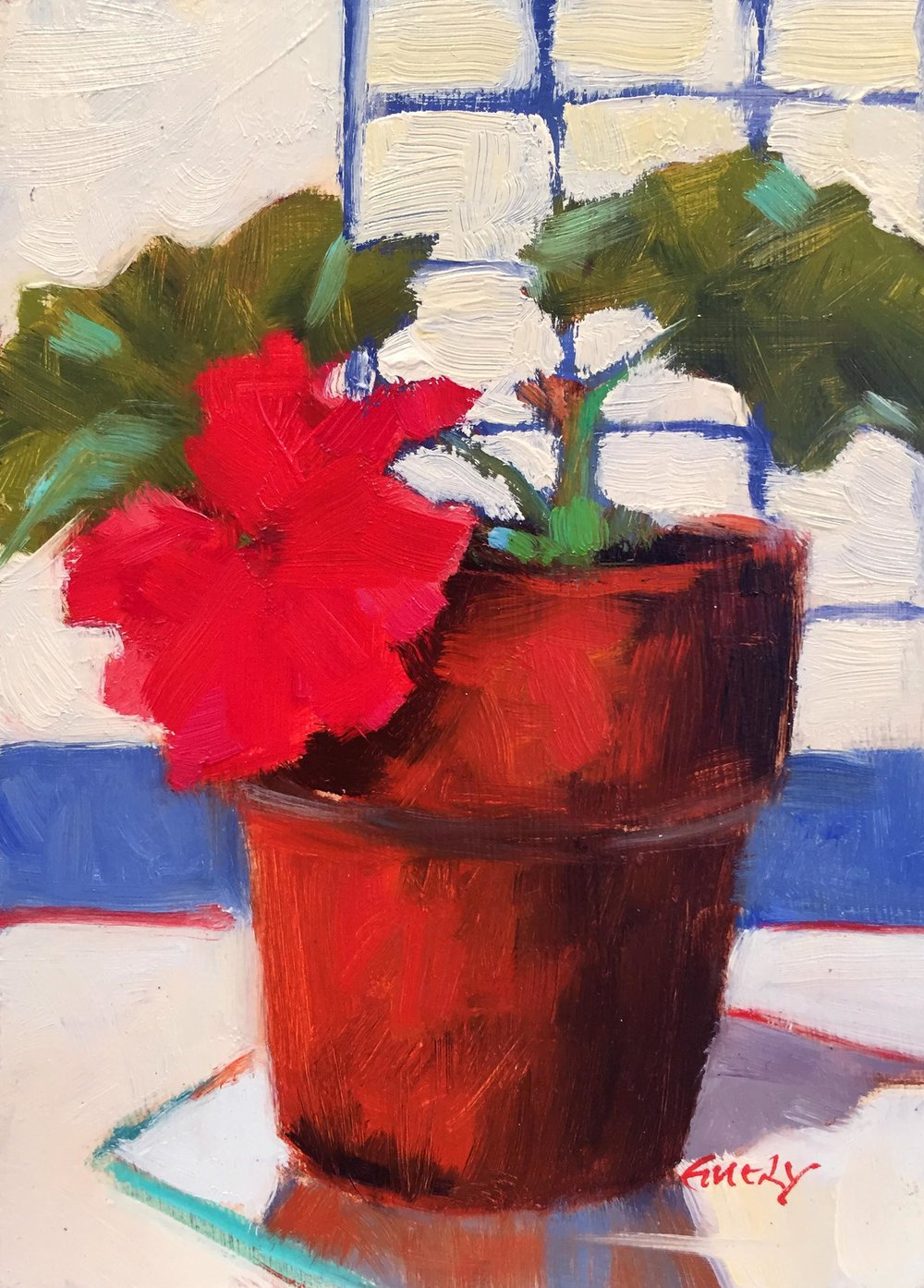 Geranium in Clay Pot