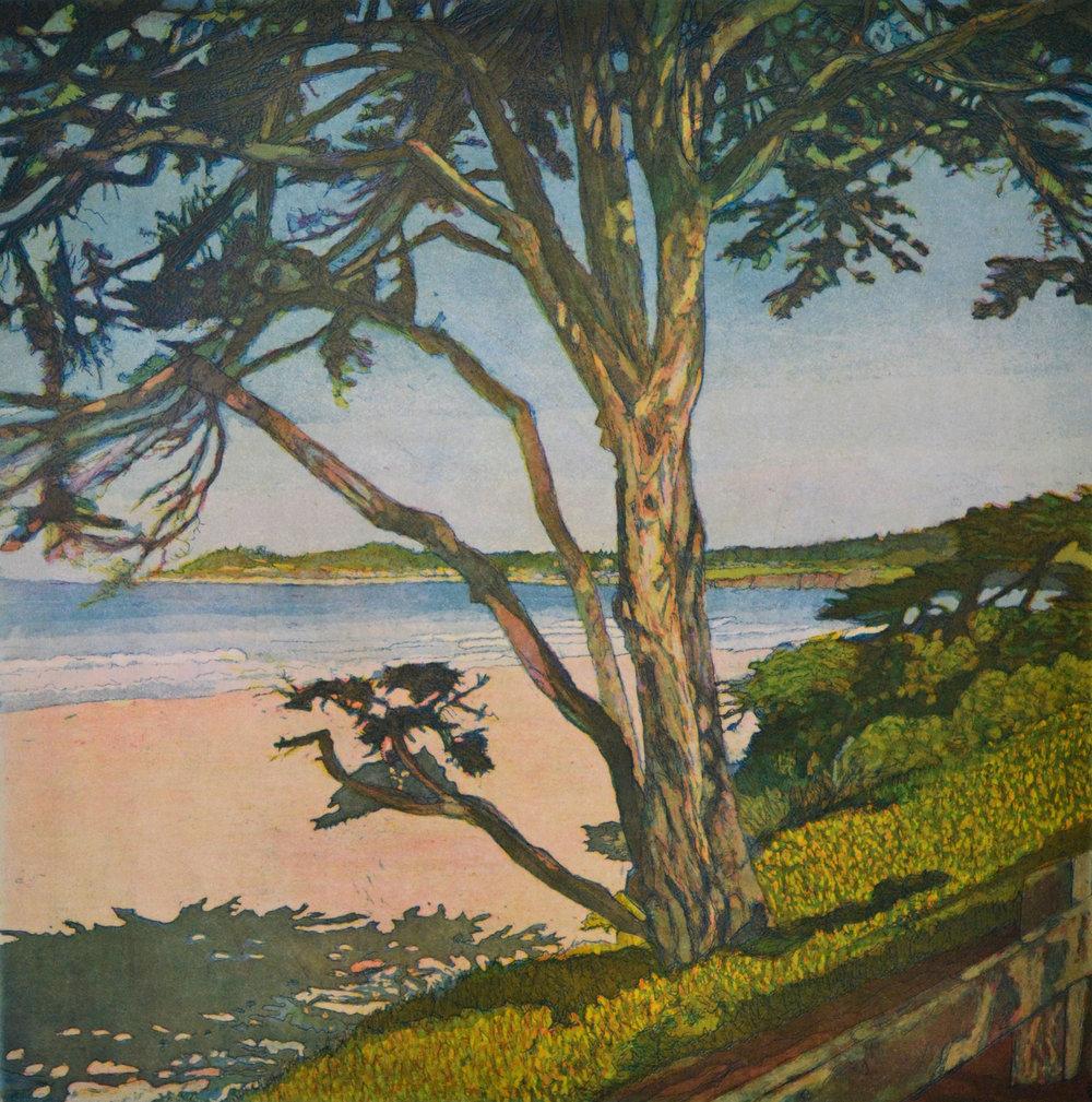 World Views X: Carmel Beach