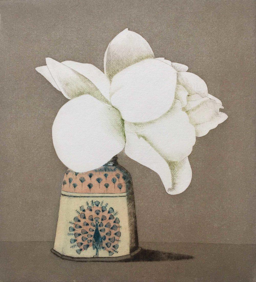 Sherwood's Rose