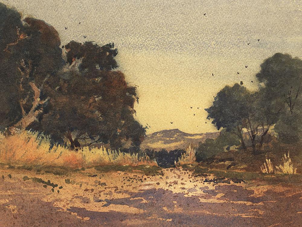 Copy of Morning Oaks