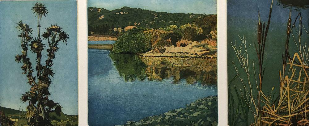 San Rafael Ponds