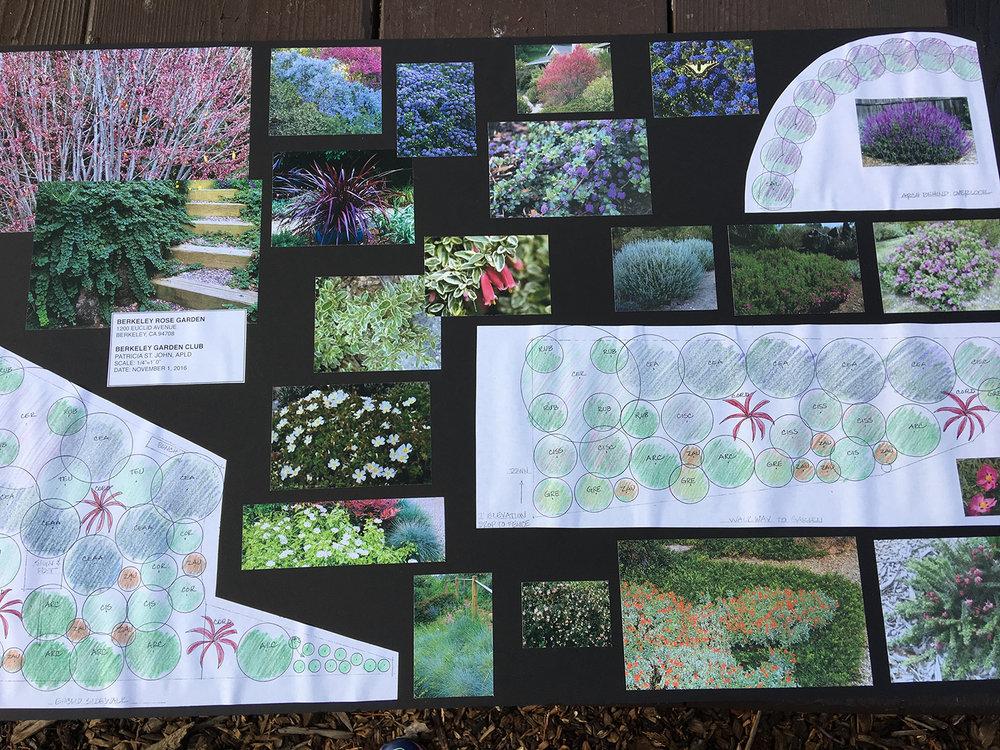 Patricia St. John's Slope Planting Plan 11/1/16