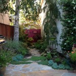 iPad-side-yard-pic-150x150.jpg