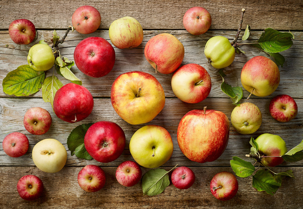 apples11-18.jpg